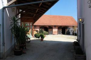 Seminarhaus Haus und Garten (12)